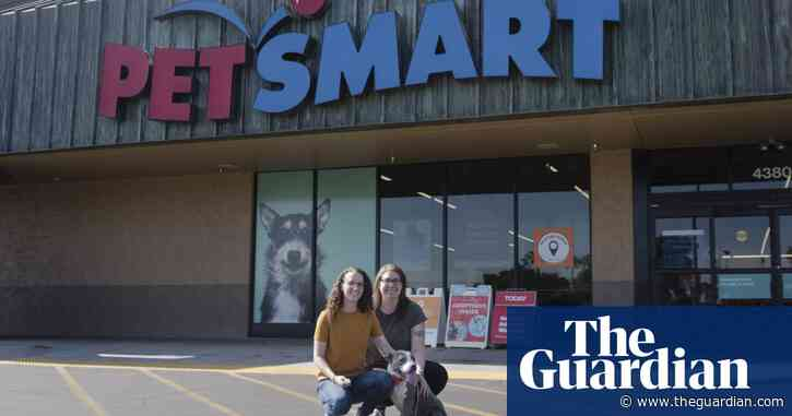 Pet adoption booming amid pandemic – but workers accuse retailers of abuses