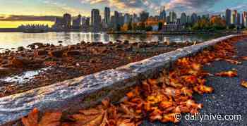 10 things to do in Vancouver this week: November 16 to 22 | Listed - Daily Hive
