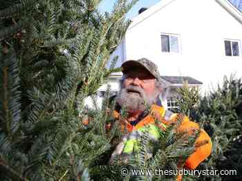 Sudbury photo: Buy Christmas tree, support Copper Cliffs scouts