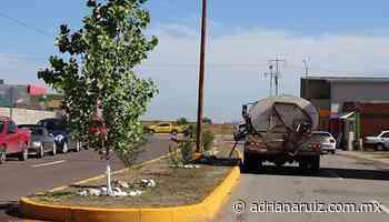 #Cuauhtemoc | Programa ´Embellecemos Cuauhtémoc´ ha rehabilitado 87 parques en la ciudad - Adriana Ruiz