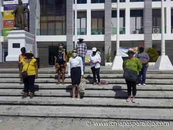 Habitantes de la Colonia Montecristo no dejaran impune envenenamiento y muerte de 60 perros - Chiapasparalelo