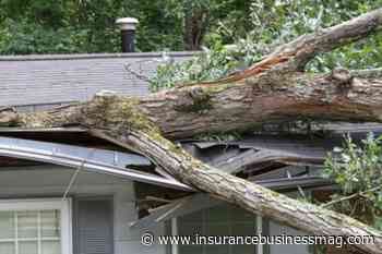 British Columbia hit by severe weather, from windstorms to snowfall - Insurance Business CA