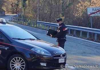 Tenta di investire i carabinieri di Luino col furgone rubato: arrestato - varesenews.it