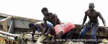 Sénégal: des centaines de pêcheurs touchés par une mystérieuse maladie cutanée