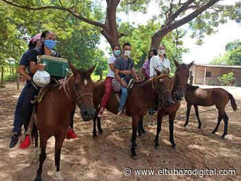 ¿Sabe usted dónde queda Médanos de Higuerote? - El Tubazo Digital