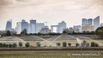 Plaine de Montesson : création de trois zones agricoles protégées - Les Échos
