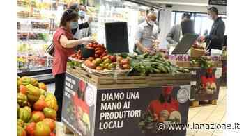 Aulla, sbarca il Carrefour Market Superstore - LA NAZIONE