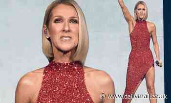 Celine Dion reacts after she loses legal battle against ICM and agent over commissions