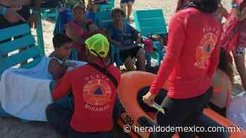 Turistas sufren por presencia de medusas en Playa de Miramar - El Heraldo de México