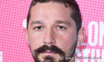 Shia LeBeouf pleads not guilty to theft and battery following altercation