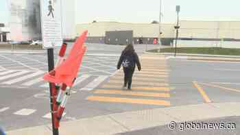 New pedestrian pilot project in Vaudreuil-Dorion uses flags to caution drivers | Watch News Videos Online - Globalnews.ca