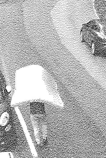 Uncidi persone multate a Recco per abbandono di rifiuti - Teleradiopace