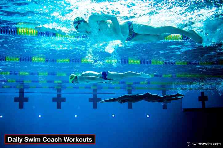 Daily Swim Coach Workout #282