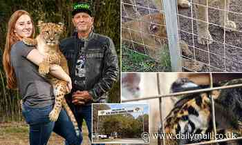 Tiger King's Jeff Lowe is accused of burning tiger carcasses on makeshift wood pyres