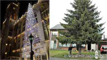 """Reuzenkerstboom van Julien krijgt plekje in Sint-Niklaas: """"De lichtjes zullen nog een keer flikkeren voor Nonkel Jules"""""""