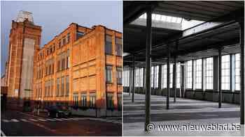 Zo ziet de vervallen Vynckier-site eruit: unieke inkijk in industrieel verleden van Gent