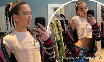 Dua Lipa shows off her toned abs as she poses in a crop top while working from home