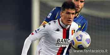 Genoa, l'ora di Shomurodov: occasione contro l'Udinese? - Fantacalcio ®