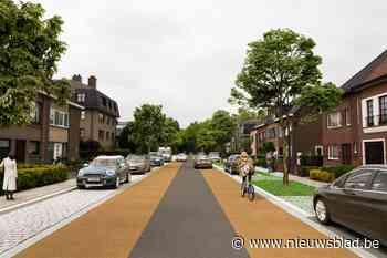 Fiets op de eerste plaats en nog drie auto-assen: gaat Gentbrugge er zo uitzien?