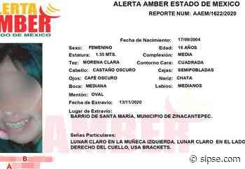 Adolescente desaparecida en Toluca fue hallada deambulando en Tulum - sipse.com