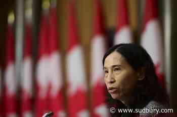 COVID-19: Trudeau warns that coronavirus crisis could determine Canada's future