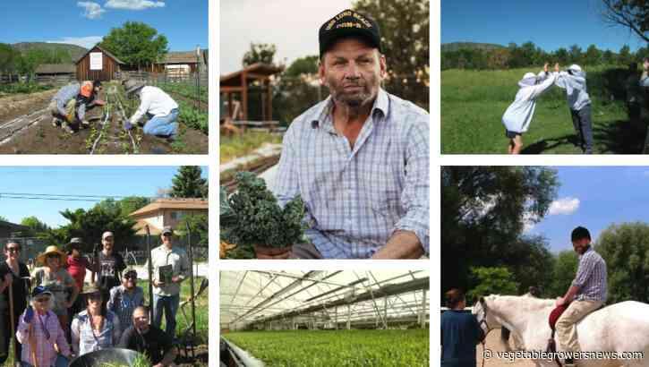Denver-based Veterans to Farmers sets up veterans for success