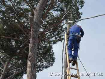 CAPANNORI: ENEL RINNOVA LINEE ED IMPIANTI ELETTRICI A VERCIANO, DOMANI I LAVORI - Verde Azzurro Notizie