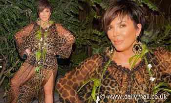 Kris Jenner flashes leg in sheer leopard print dress as she shares throwbacks