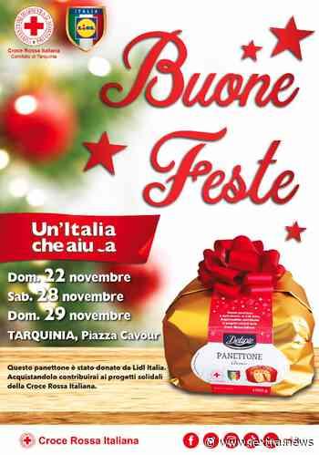 Tarquinia, due weekend in piazza con la Croce Rossa per i Panettoni Solidali - lextra.news