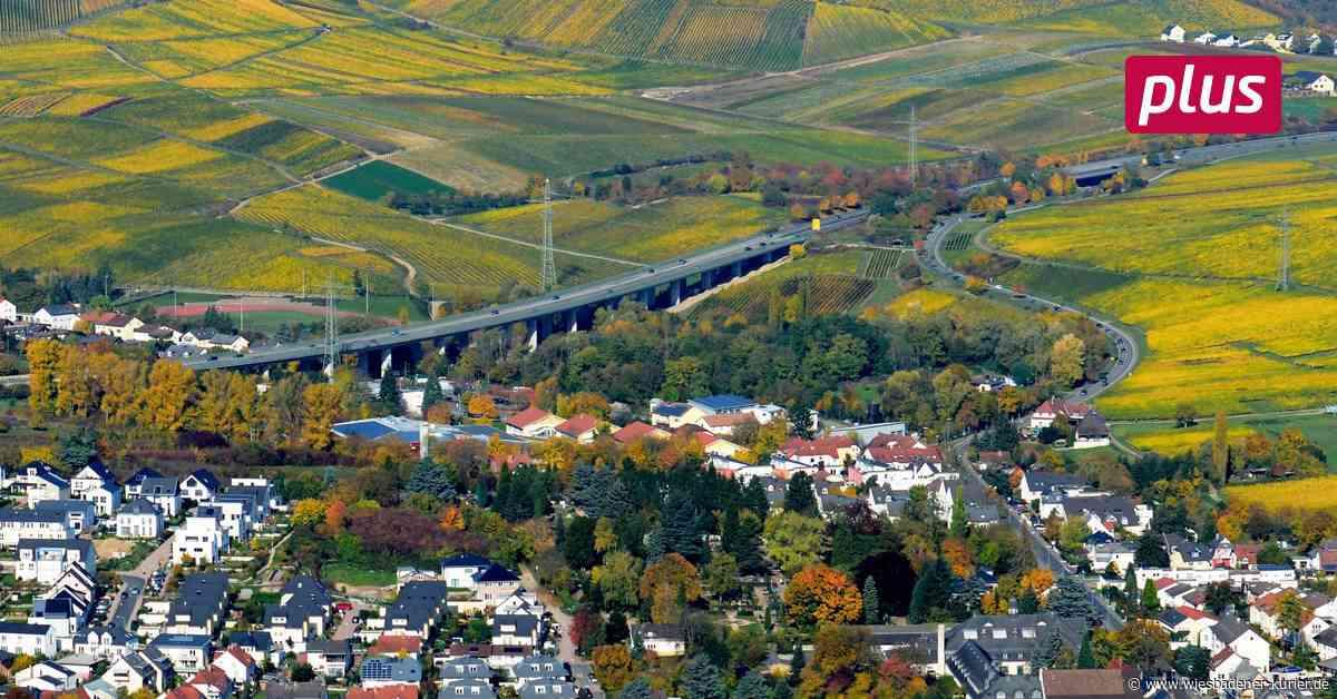 Staatsweingüter Kloster Eberbach bauen Maschinenhalle - Wiesbadener Kurier