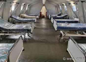 Ospedali da campo per l'emergenza Covid, riunione operativa a Vibo Valentia - Strill.it