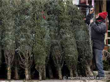 FAQ: What you need to know about Quebec's COVID Christmas plan