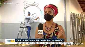 Alunos da única escola kalunga de Aparecida de Goiânia ganham painel pelo Dia da Consciência Negra - G1