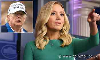 Kayleigh McEnany slams 'inexcusable' 2016 transition, won't say when Trump will acknowledge loss