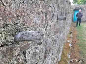 Guingamp : pourquoi ces os plantés dans les vieux murs de la ville ? - L'Echo de L'Argoat