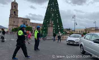 No habrá encendido de árbol monumental en Morelia - Quadratín - Quadratín Michoacán