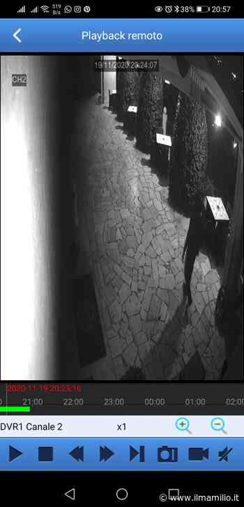 Sventati due furti nelle aziende vinicole del Frascati - ilmamilio.it - L'informazione dei Castelli romani