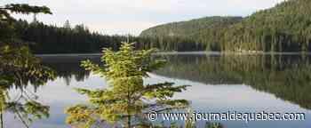 L'histoire forestière du Québec : source de fierté
