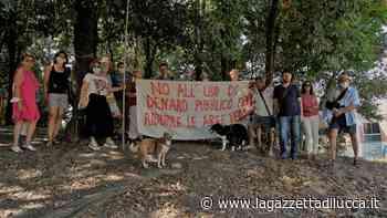 Mozione in consiglio comunale per salvare la Montagnola - La Gazzetta di Lucca