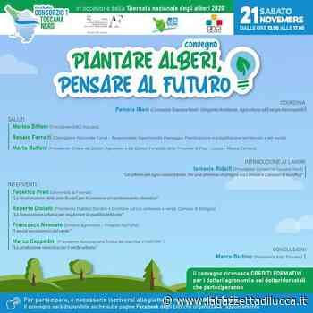"""""""Piantare alberi, pensare al futuro"""" » La Gazzetta di Lucca - La Gazzetta di Lucca"""