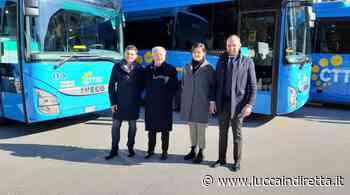 Lucca, 7 milioni per acquistare nuovi bus per le linee Lam - LuccaInDiretta