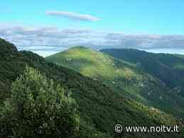 Il Comune di Lucca aderirà alla Comunità di Bosco del Monte Pisano - NoiTV - La vostra televisione