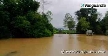Hay 5.000 hectáreas pasadas por agua en Sabana de Torres - Vanguardia