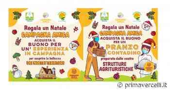 Coldiretti Novara–Vco e Vercelli-Biella: a Natale aiutare le aziende del territorio - Prima Vercelli