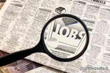 Offerta per un lavoro in municipio - Prima Biella