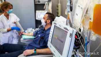 Emergenza Covid, l'appello dei medici ai guariti: «Serve plasma iperimmune» - Ostuni - Ostuni News