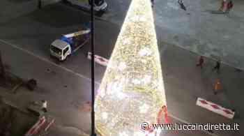 """Polemiche sull'albero di Natale a Viareggio, Giorgio Del Ghingaro: """"Lunedì lo faccio smontare"""" - LuccaInDiretta"""