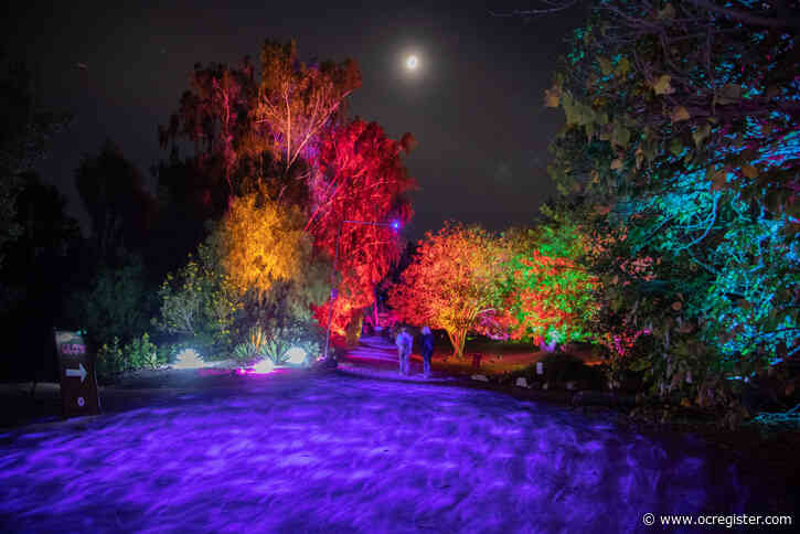 4 things to see at South Coast Botanic Garden's holiday 'Glow' light installation