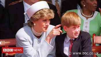 Prince Harry 'aware' of inquiry into BBC Diana interview