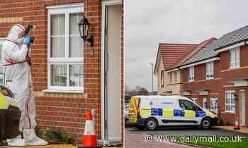 Man, 27, is charged with murder after woman, 25, was 'stabbed'